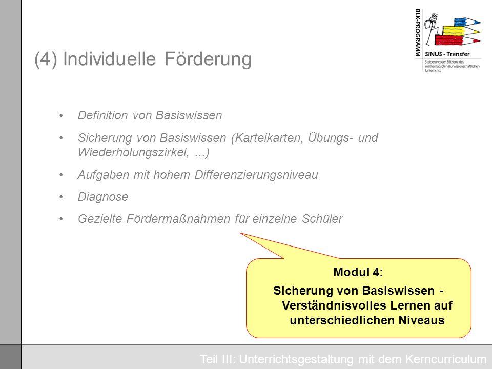 (4) Individuelle Förderung