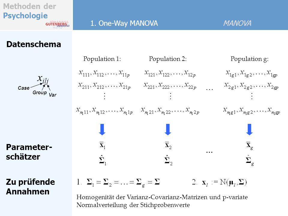 xilj Datenschema Parameter- schätzer Zu prüfende Annahmen