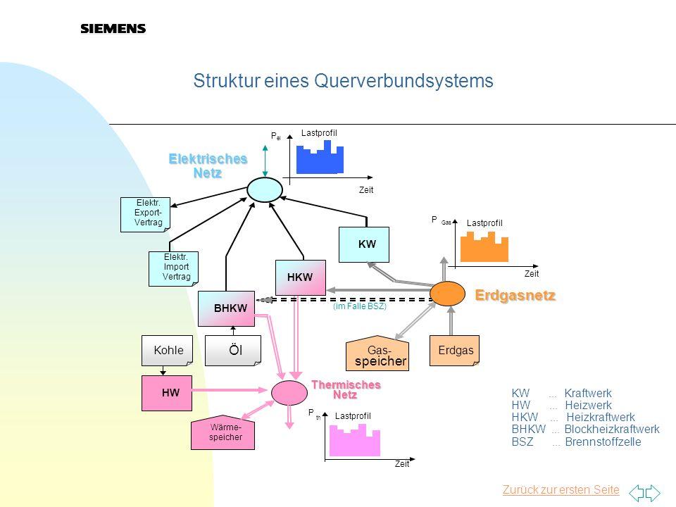 Struktur eines Querverbundsystems