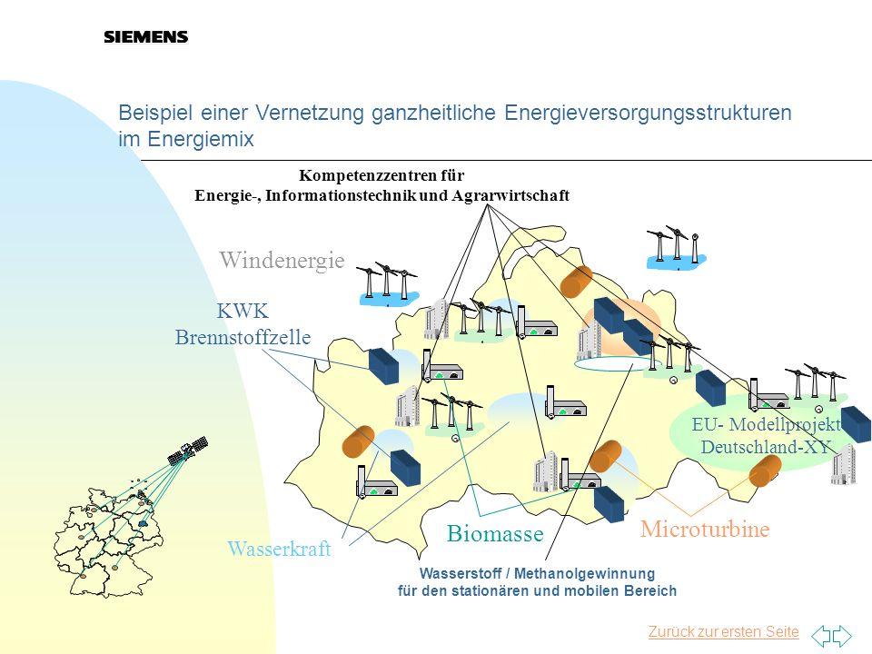 Windenergie Microturbine Biomasse
