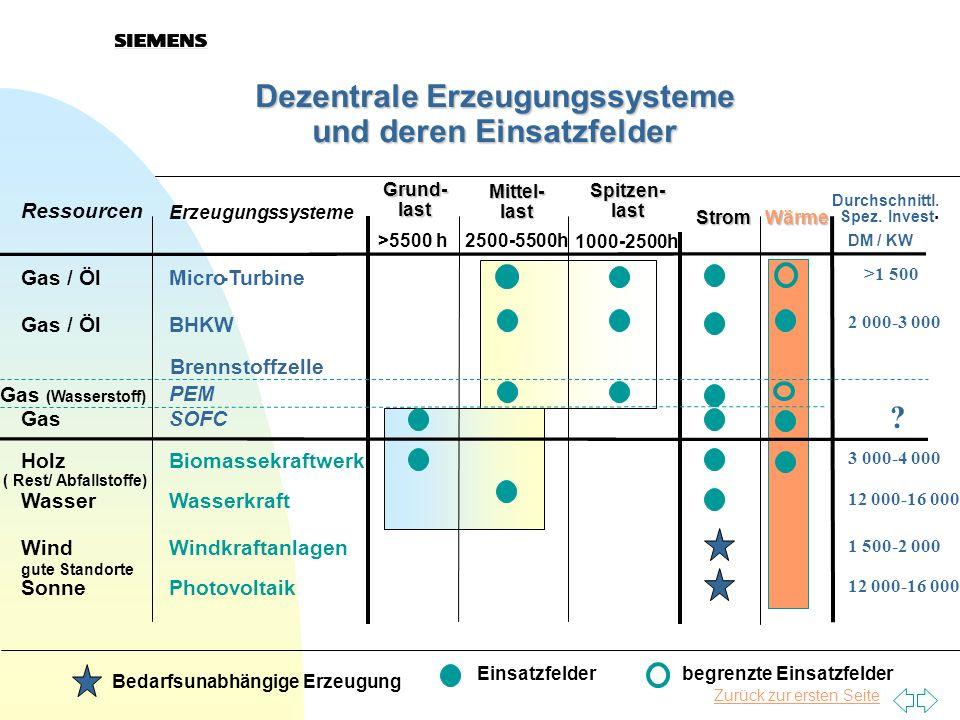 Dezentrale Erzeugungssysteme und deren Einsatzfelder