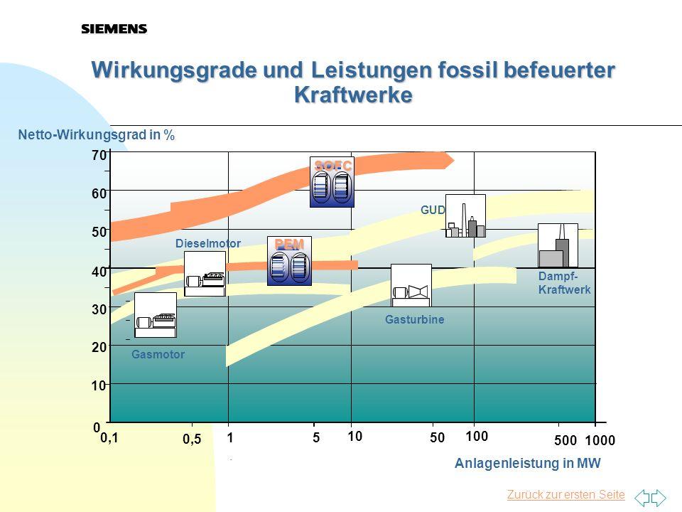 Wirkungsgrade und Leistungen fossil befeuerter Kraftwerke