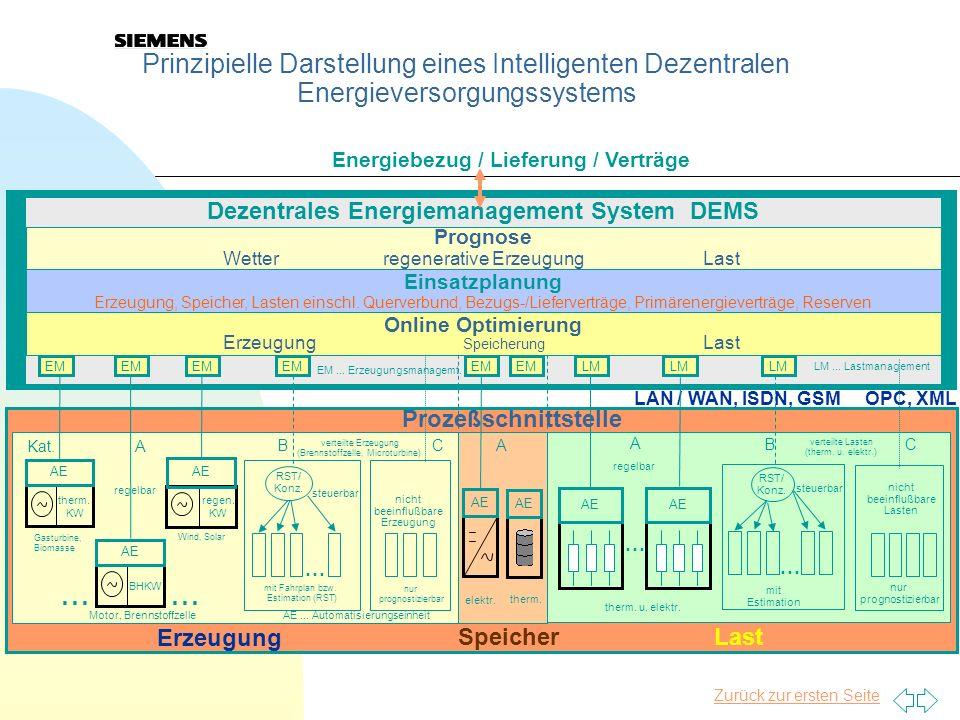 Dezentrales Energiemanagement System DEMS