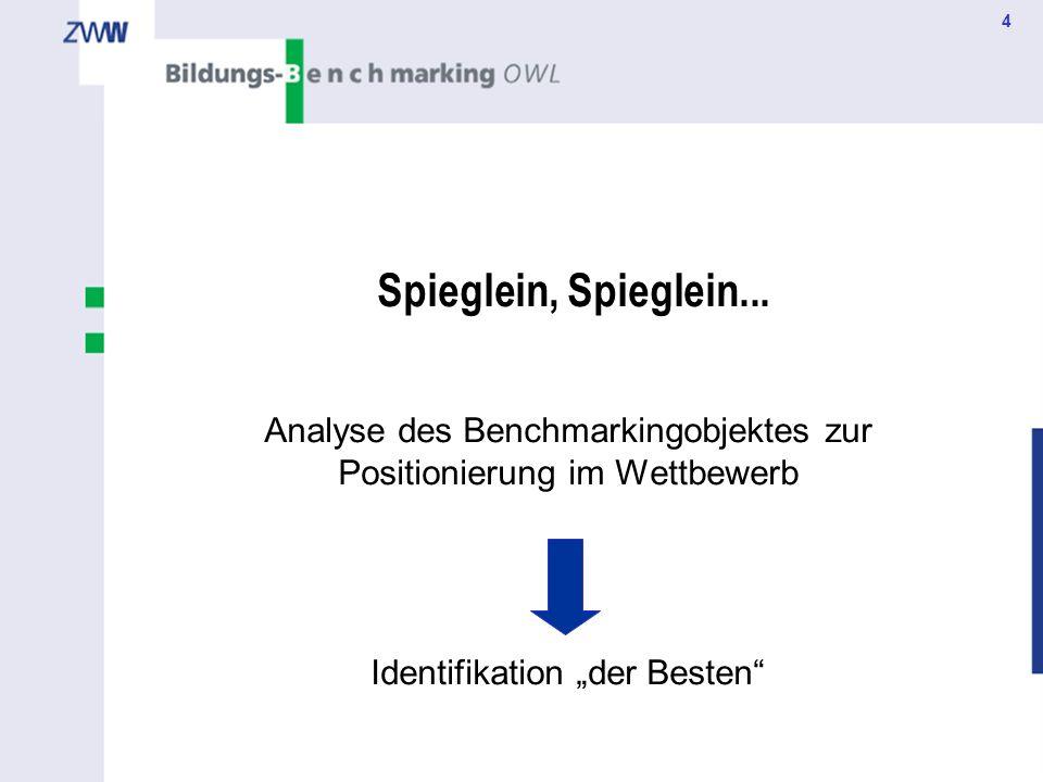 Spieglein, Spieglein... Analyse des Benchmarkingobjektes zur Positionierung im Wettbewerb.