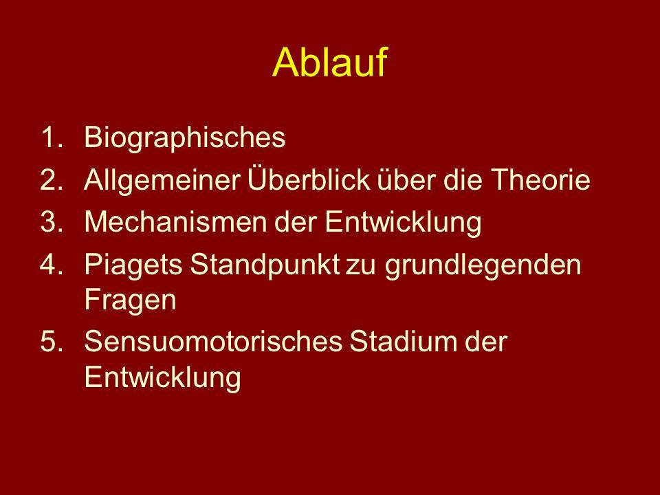 Ablauf Biographisches Allgemeiner Überblick über die Theorie