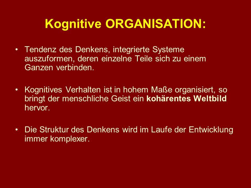 Kognitive ORGANISATION: