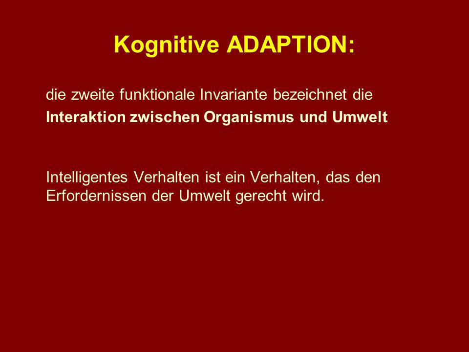Kognitive ADAPTION: die zweite funktionale Invariante bezeichnet die