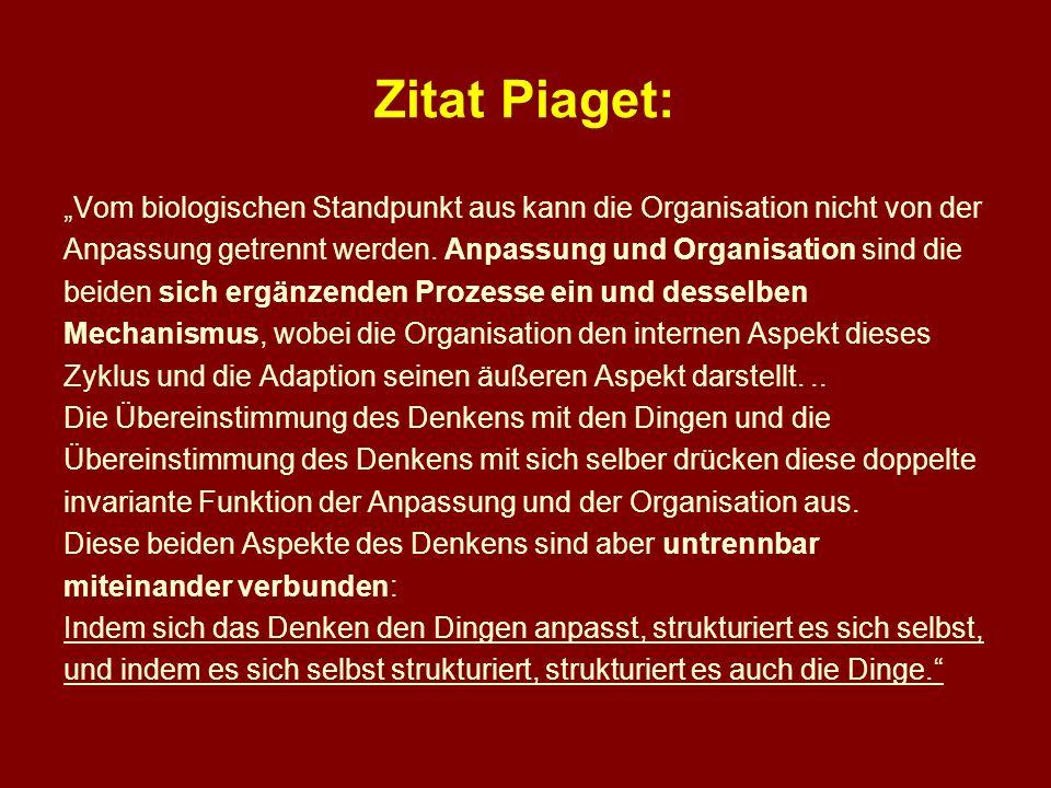 """Zitat Piaget: """"Vom biologischen Standpunkt aus kann die Organisation nicht von der. Anpassung getrennt werden. Anpassung und Organisation sind die."""