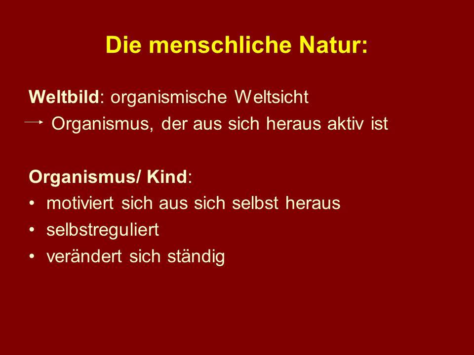 Die menschliche Natur: