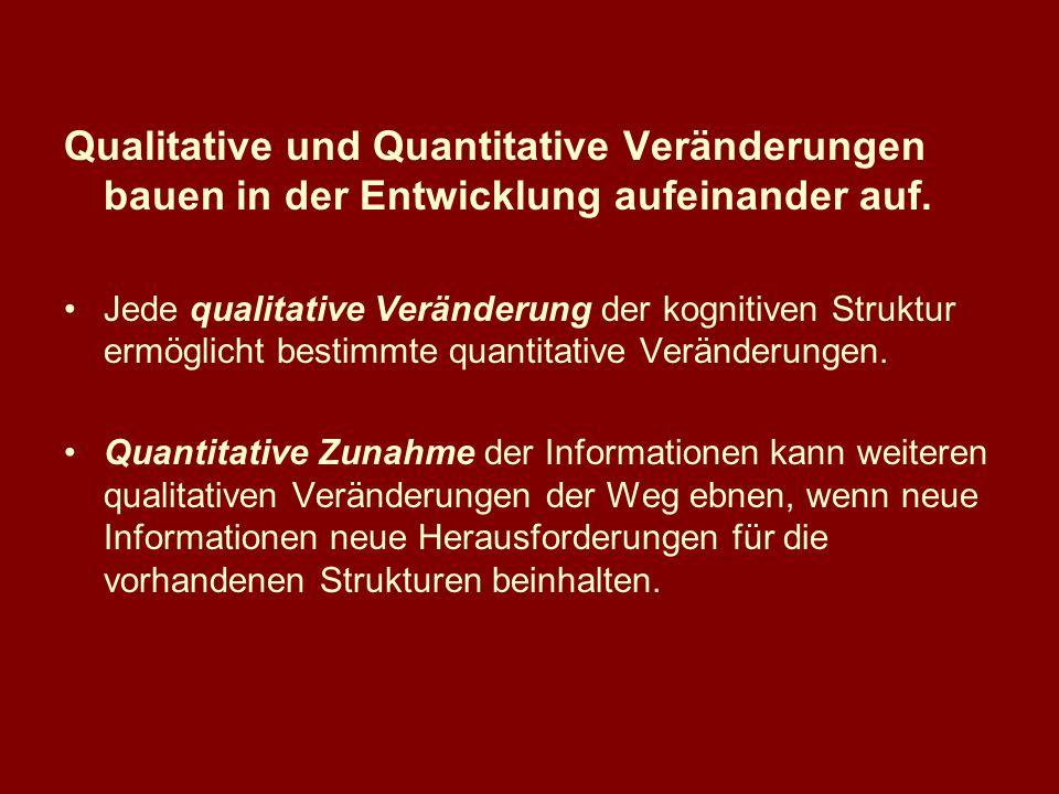 Qualitative und Quantitative Veränderungen bauen in der Entwicklung aufeinander auf.