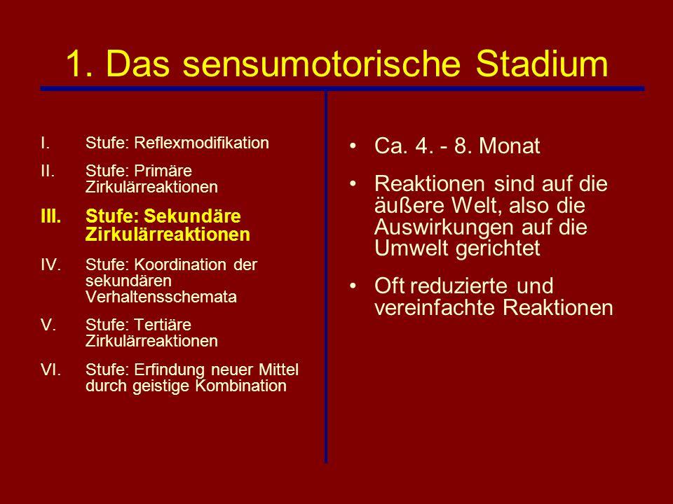 1. Das sensumotorische Stadium