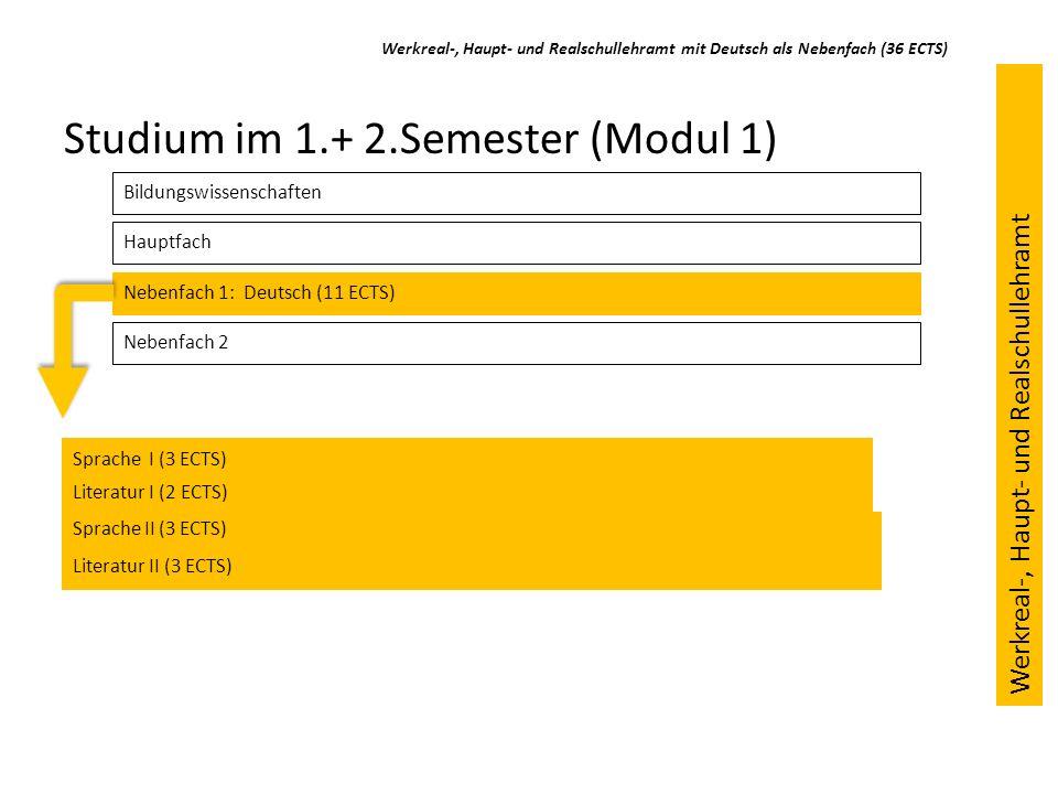 Studium im 1.+ 2.Semester (Modul 1)