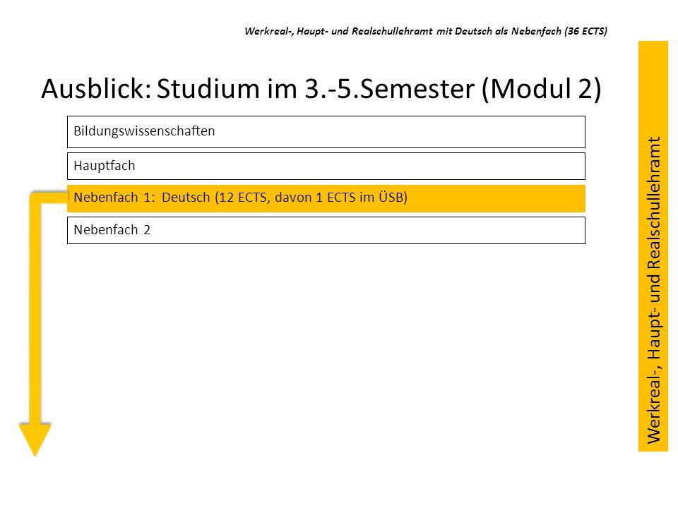 Ausblick: Studium im 3.-5.Semester (Modul 2)