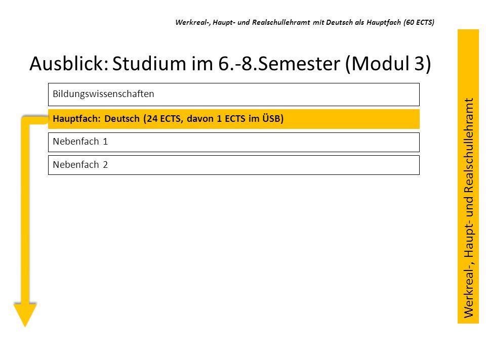 Ausblick: Studium im 6.-8.Semester (Modul 3)