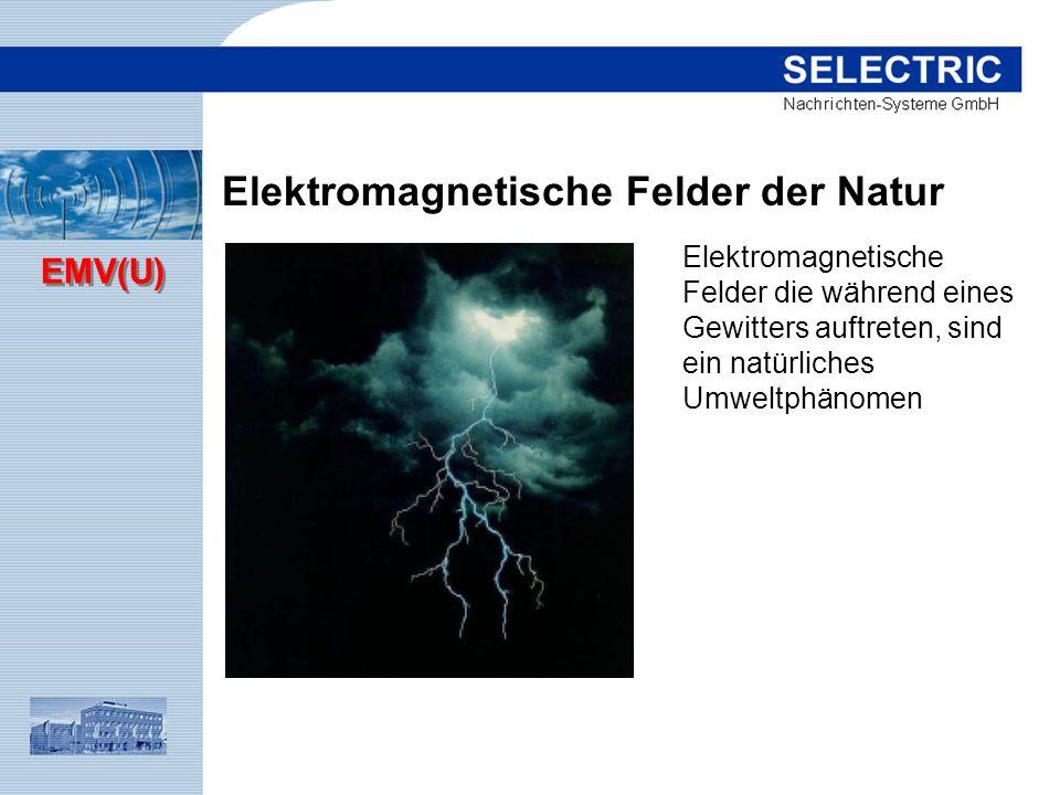 Elektromagnetische Felder der Natur
