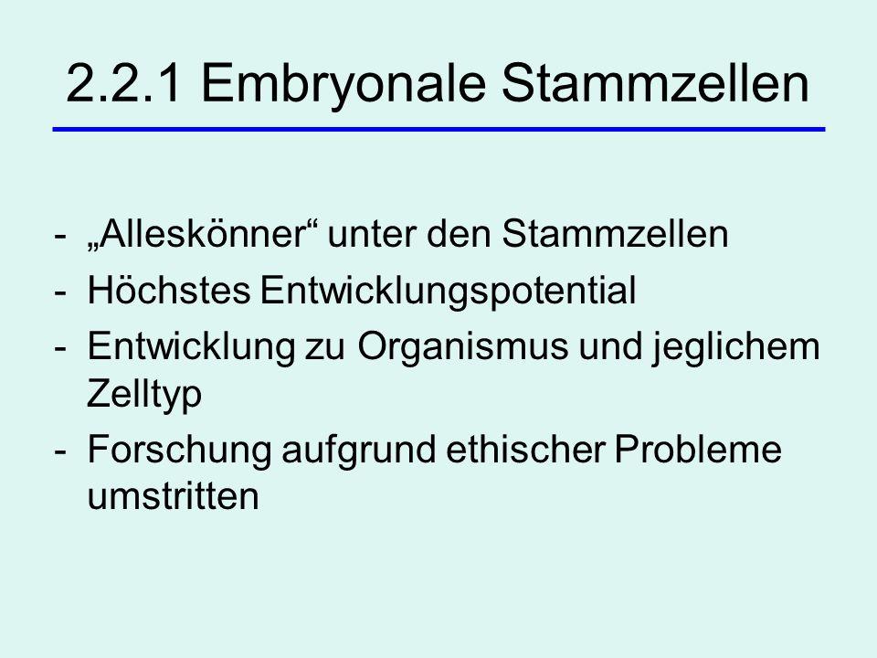 2.2.1 Embryonale Stammzellen