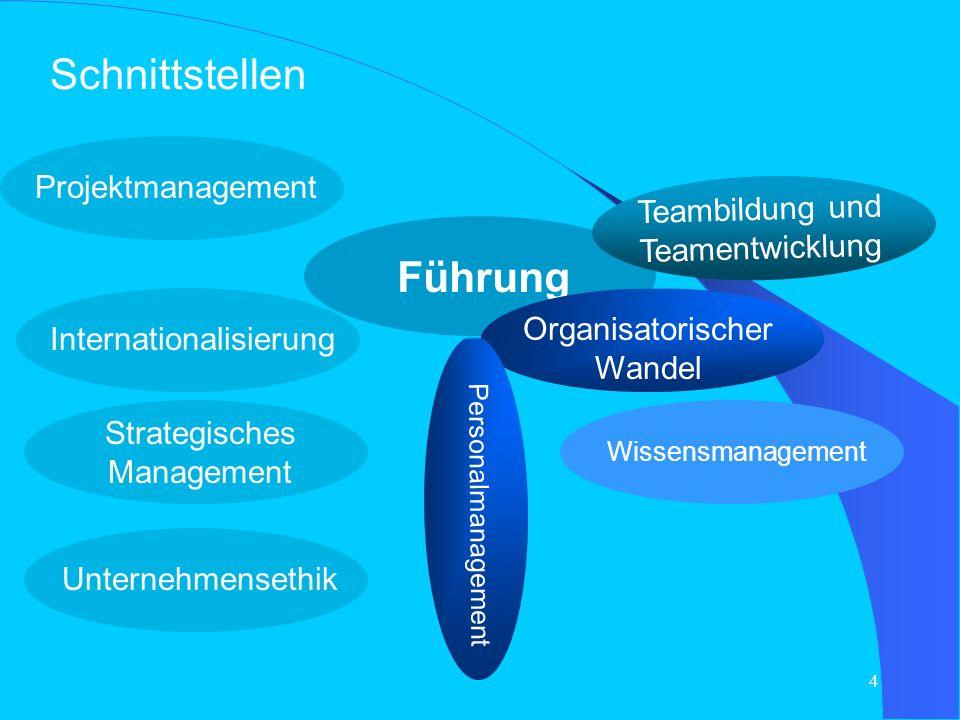 Schnittstellen Führung Projektmanagement