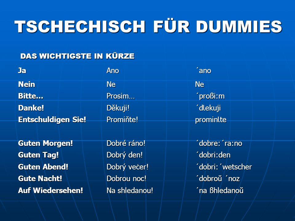 TSCHECHISCH FÜR DUMMIES