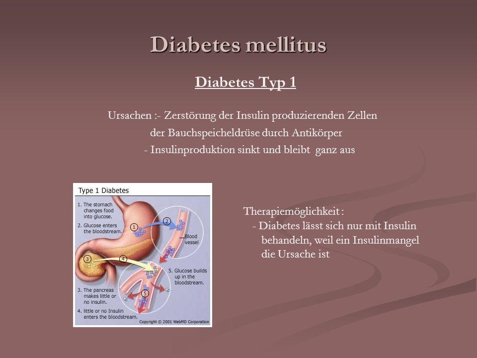 Ursachen :- Zerstörung der Insulin produzierenden Zellen