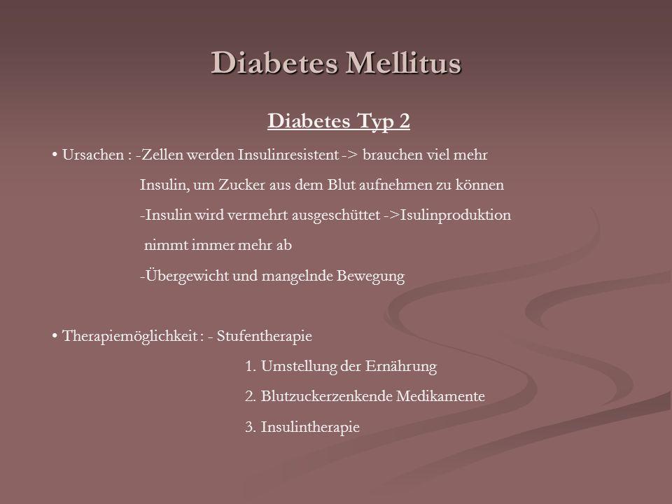 Diabetes Mellitus Diabetes Typ 2