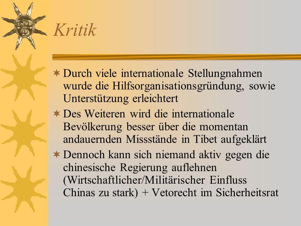KritikDurch viele internationale Stellungnahmen wurde die Hilfsorganisationsgründung, sowie Unterstützung erleichtert.