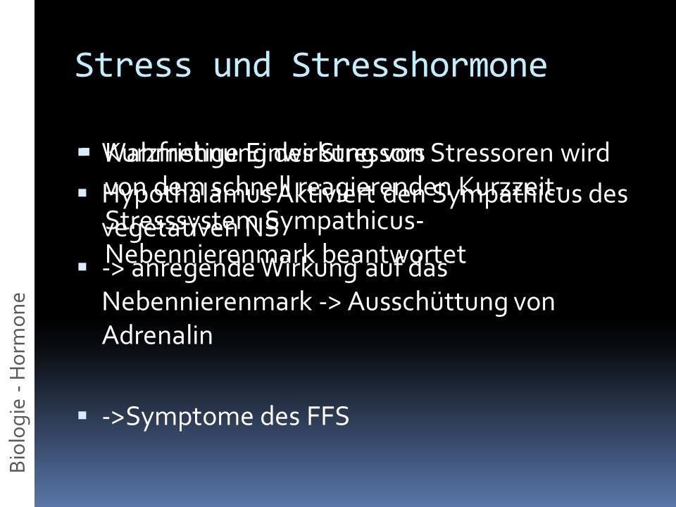 Stress und Stresshormone