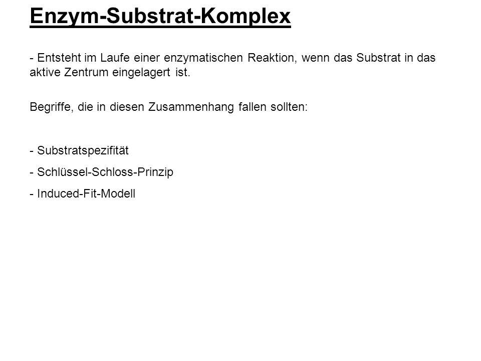 Enzym-Substrat-Komplex