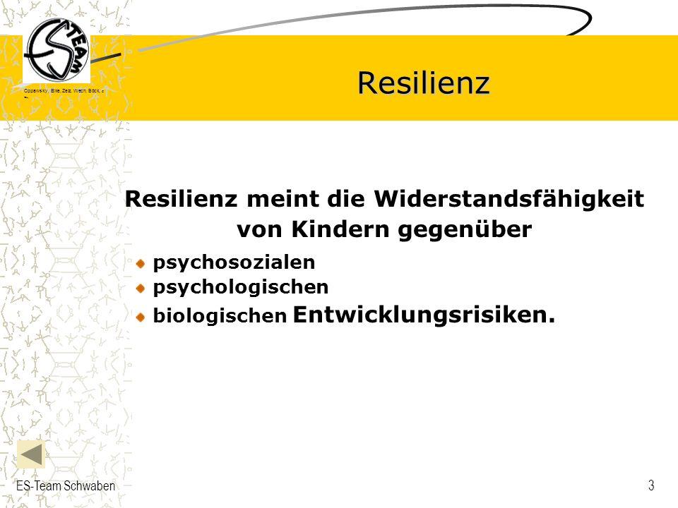 Resilienz meint die Widerstandsfähigkeit