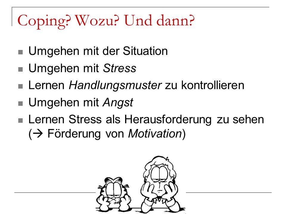 Coping Wozu Und dann Umgehen mit der Situation Umgehen mit Stress