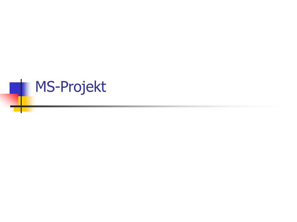 MS-Projekt