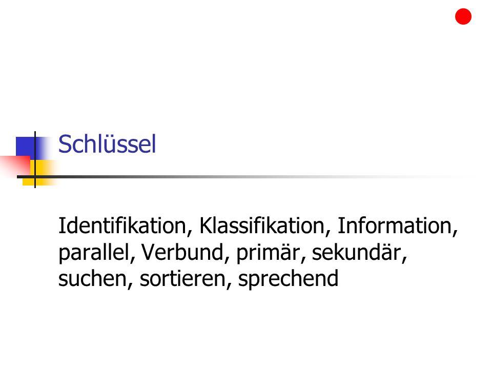 Schlüssel Identifikation, Klassifikation, Information, parallel, Verbund, primär, sekundär, suchen, sortieren, sprechend.