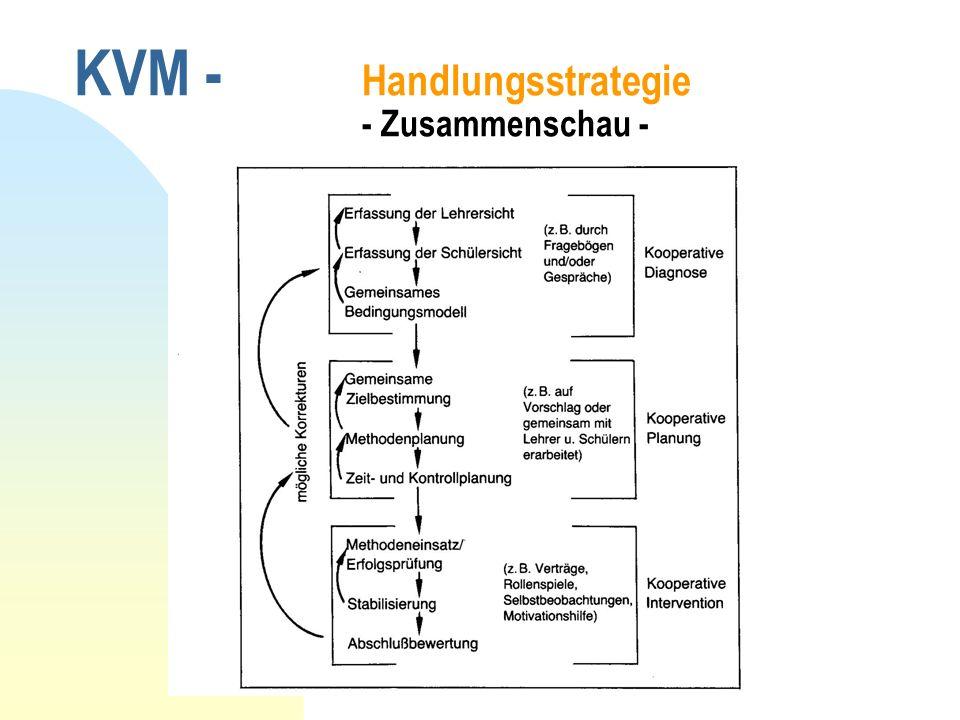KVM - Handlungsstrategie - Zusammenschau -