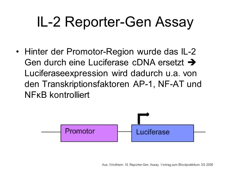 IL-2 Reporter-Gen Assay
