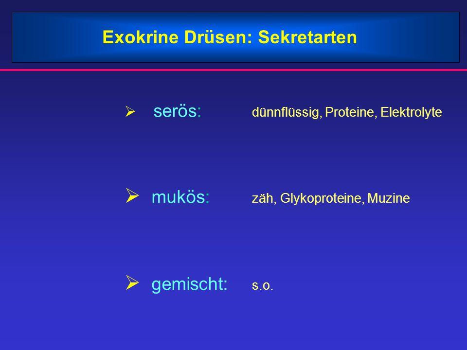mukös: zäh, Glykoproteine, Muzine