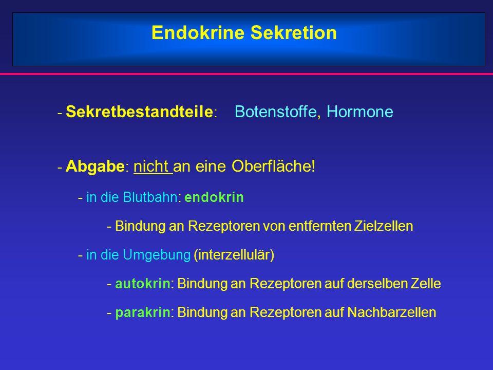 Endokrine Sekretion - Sekretbestandteile: Botenstoffe, Hormone