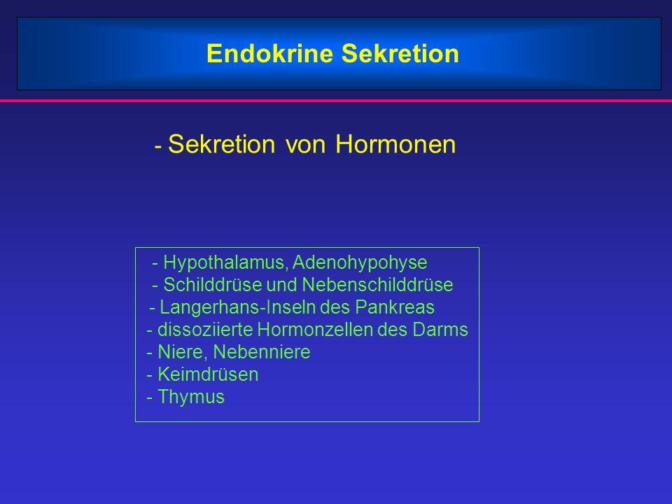 Endokrine Sekretion - Sekretion von Hormonen