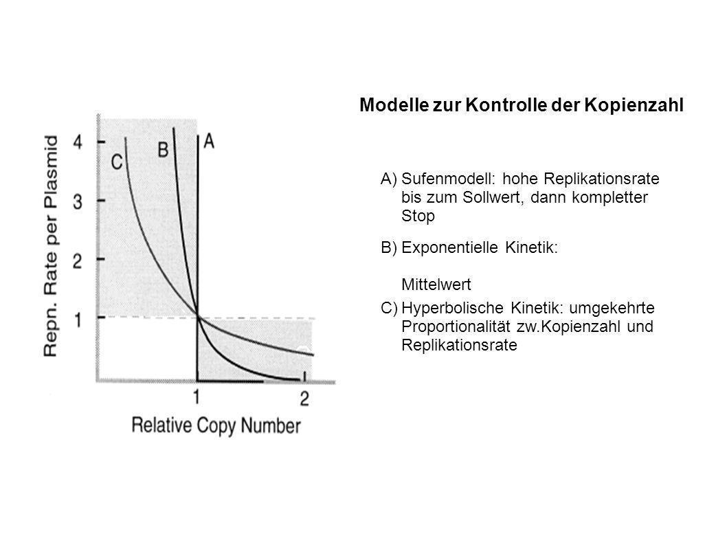 Modelle zur Kontrolle der Kopienzahl