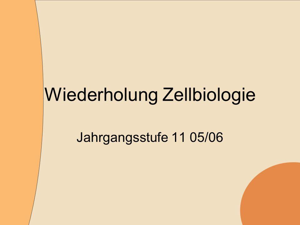 Wiederholung Zellbiologie