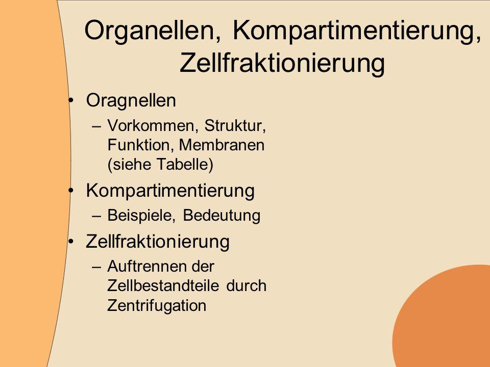 Organellen, Kompartimentierung, Zellfraktionierung