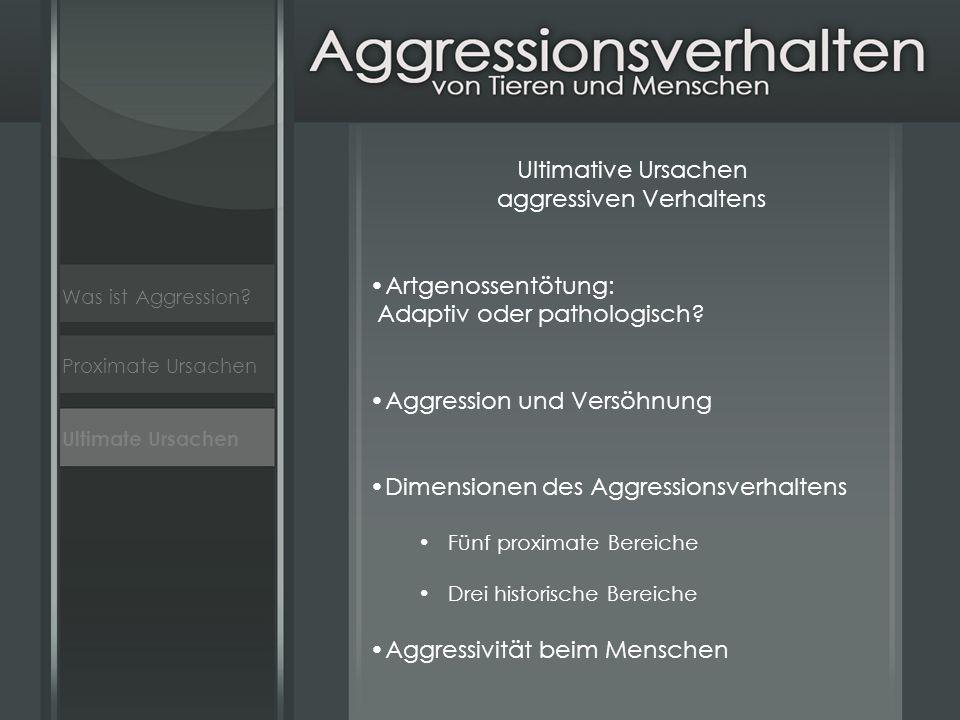 aggressiven Verhaltens