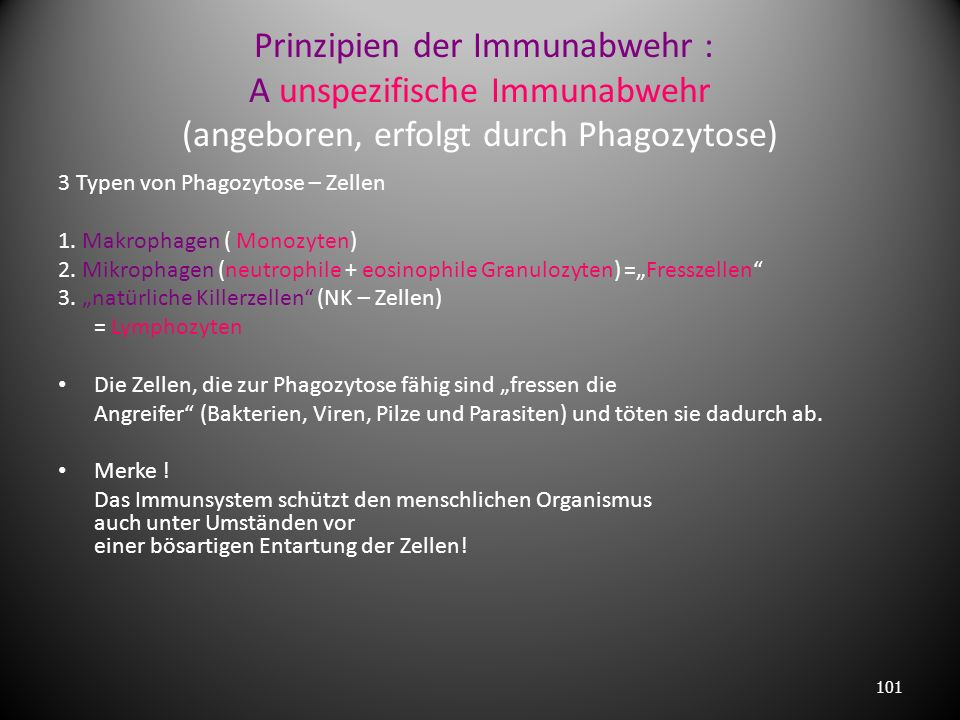 Prinzipien der Immunabwehr : A unspezifische Immunabwehr (angeboren, erfolgt durch Phagozytose)