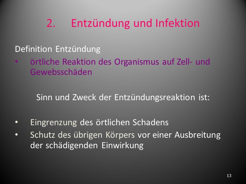 2. Entzündung und Infektion