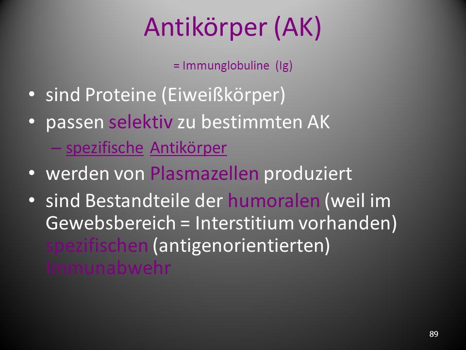 Antikörper (AK) = Immunglobuline (Ig)