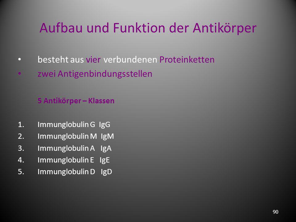 Aufbau und Funktion der Antikörper
