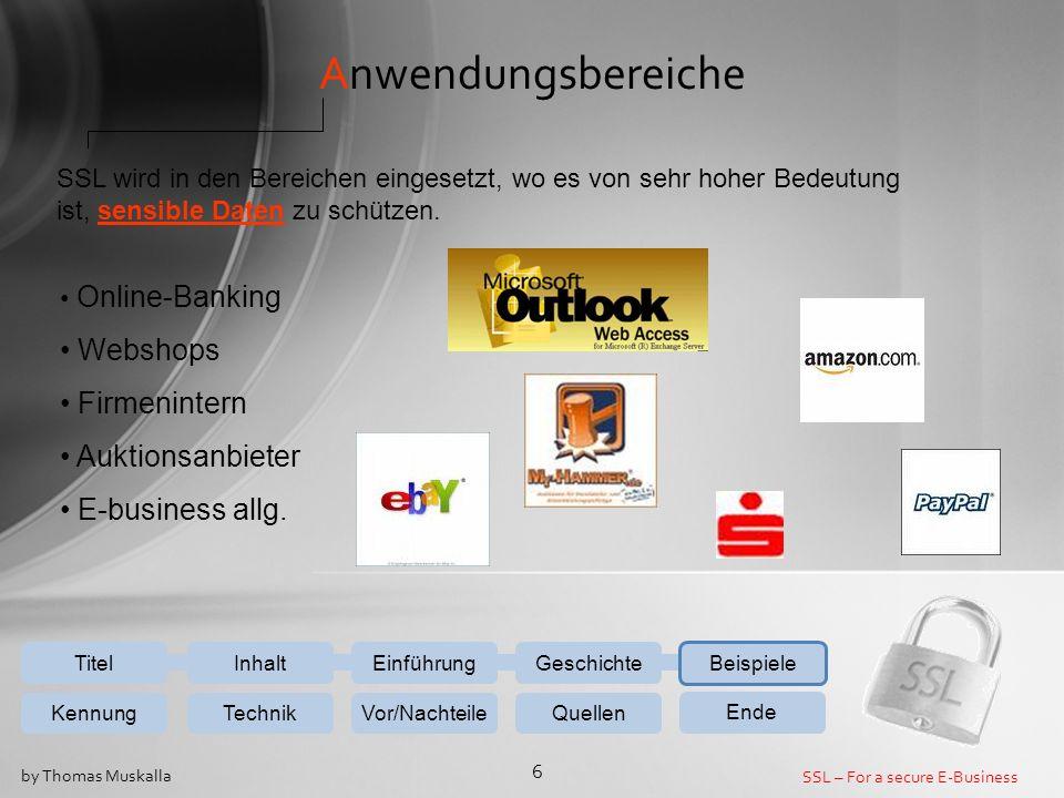 Anwendungsbereiche Webshops Firmenintern Auktionsanbieter