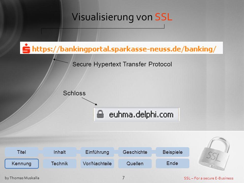 Visualisierung von SSL