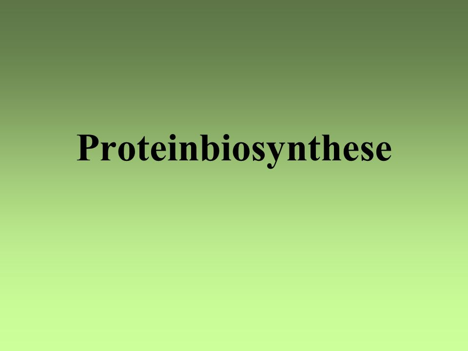 Proteinbiosynthese