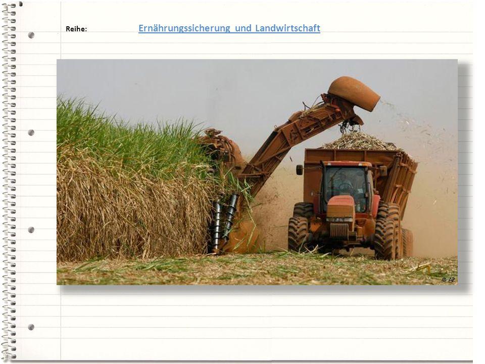 Reihe: Ernährungssicherung und Landwirtschaft