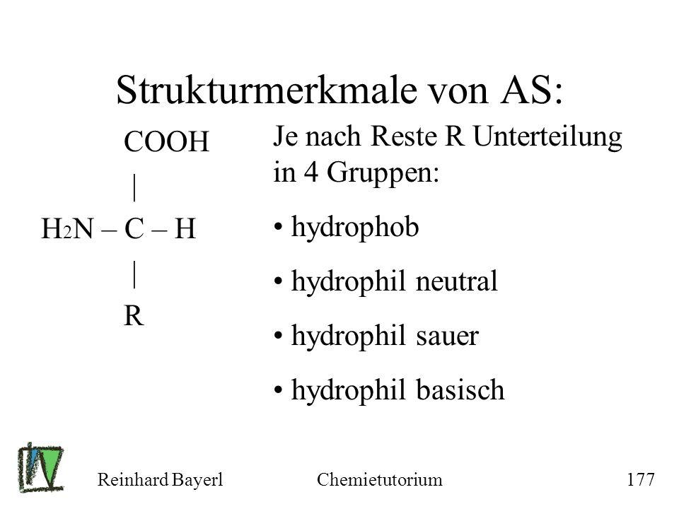 Strukturmerkmale von AS: