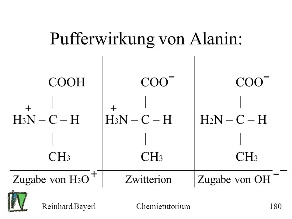 Pufferwirkung von Alanin: